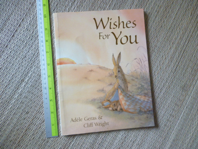 Wishes For You (Paperback)