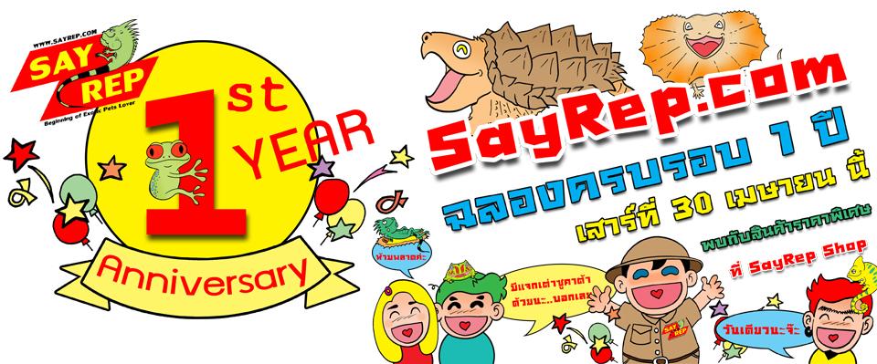 SayRep.com