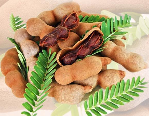 สารสกัด มะขาม (Tamarine Extract)