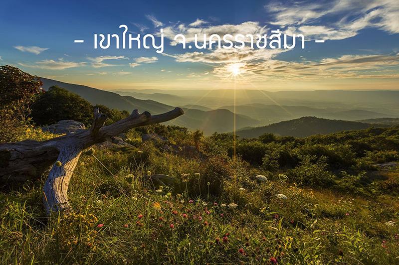 ขอบคุณภาพจาก : www.pixabay.com