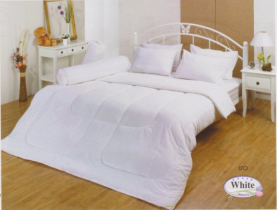 ชุดเครื่องนอน ผ้าปูที่นอน ทิวลิป สีพื้น tulip สีขาว