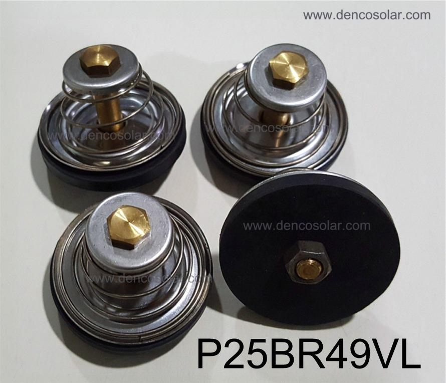 ชุดลิ้นบ่าวาวล์ (ชุด4ชิ้น) รุ่นP25BR49VL