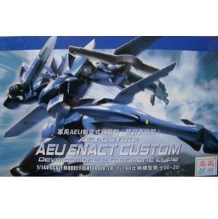 AEU Enact Custom