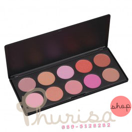 Coastal Scents : 10 BLUSH Palette